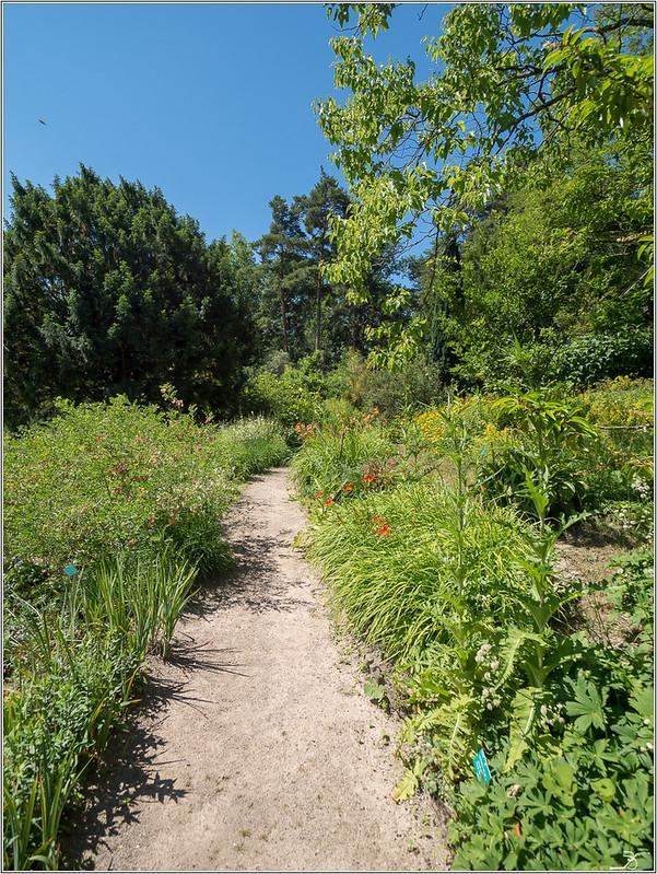 Jardin botanique Saverne: le jardin 28221654507_993872a6aa_c