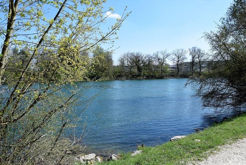 River Aare 17.04 (10)