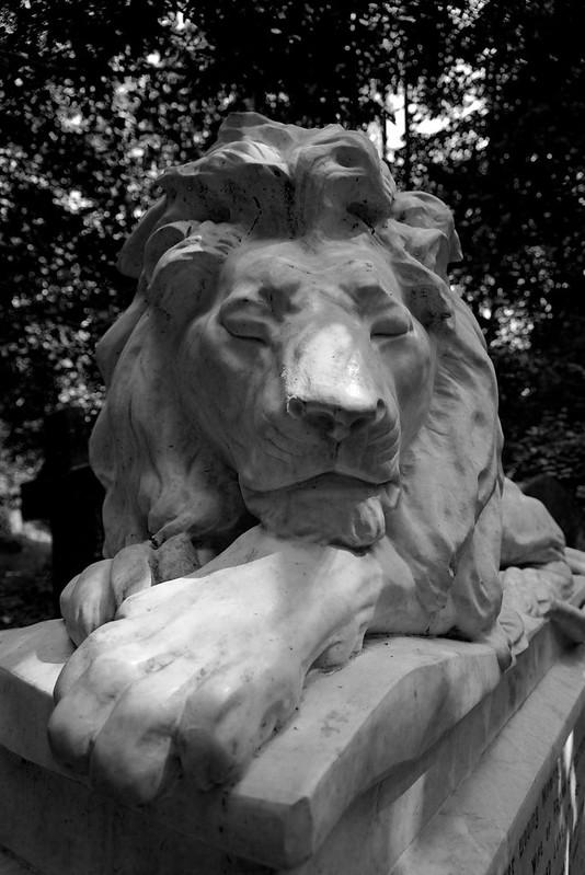 Lion2BW2