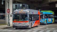 WMATA Metrobus 2016 New Flyer Xcelsior XDE40 #7379 &Montgomery County Transit Ride On 2009 Gillig Low Floor Advantage Hybrid #5349