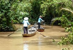 Vietnam / Việt Nam