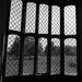 'Latticed Window' Lacock Abbey