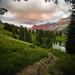 En descendant au lac by Olivier Rapin