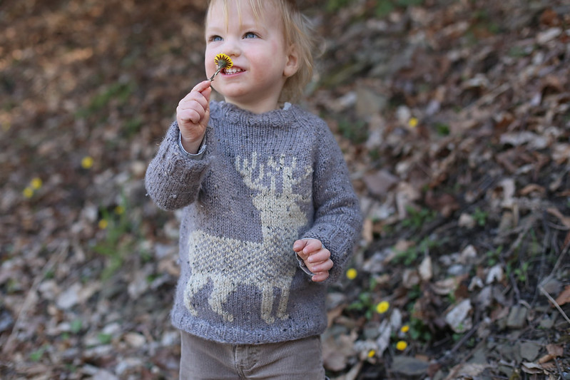 reindeer sweater (and flower lover!)