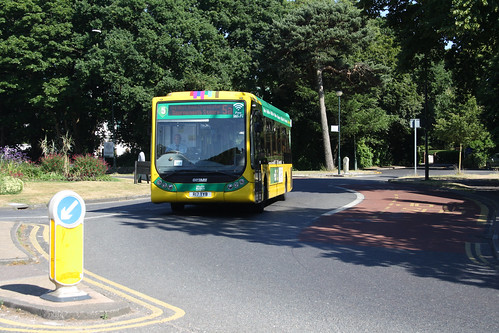 Yellow Buses 17 R17TYB