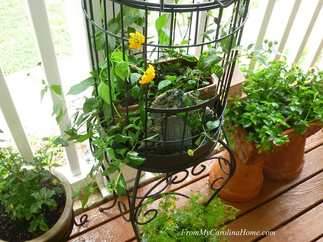 Upcycle Birdcage at FromMyCarolinaHome.com