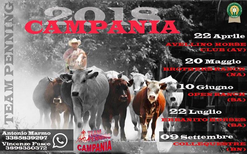 Team Penning Campania 2018 erbanito