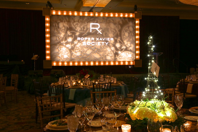 Screen Surround-Marquee Lighting 9'x16'-Gold (2)