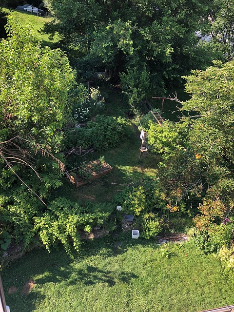 Backyard, view from the attic