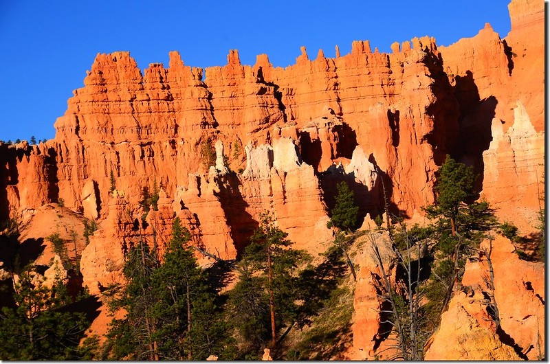 Queens Navajo Combination Loop,Bryce Canyon (5)