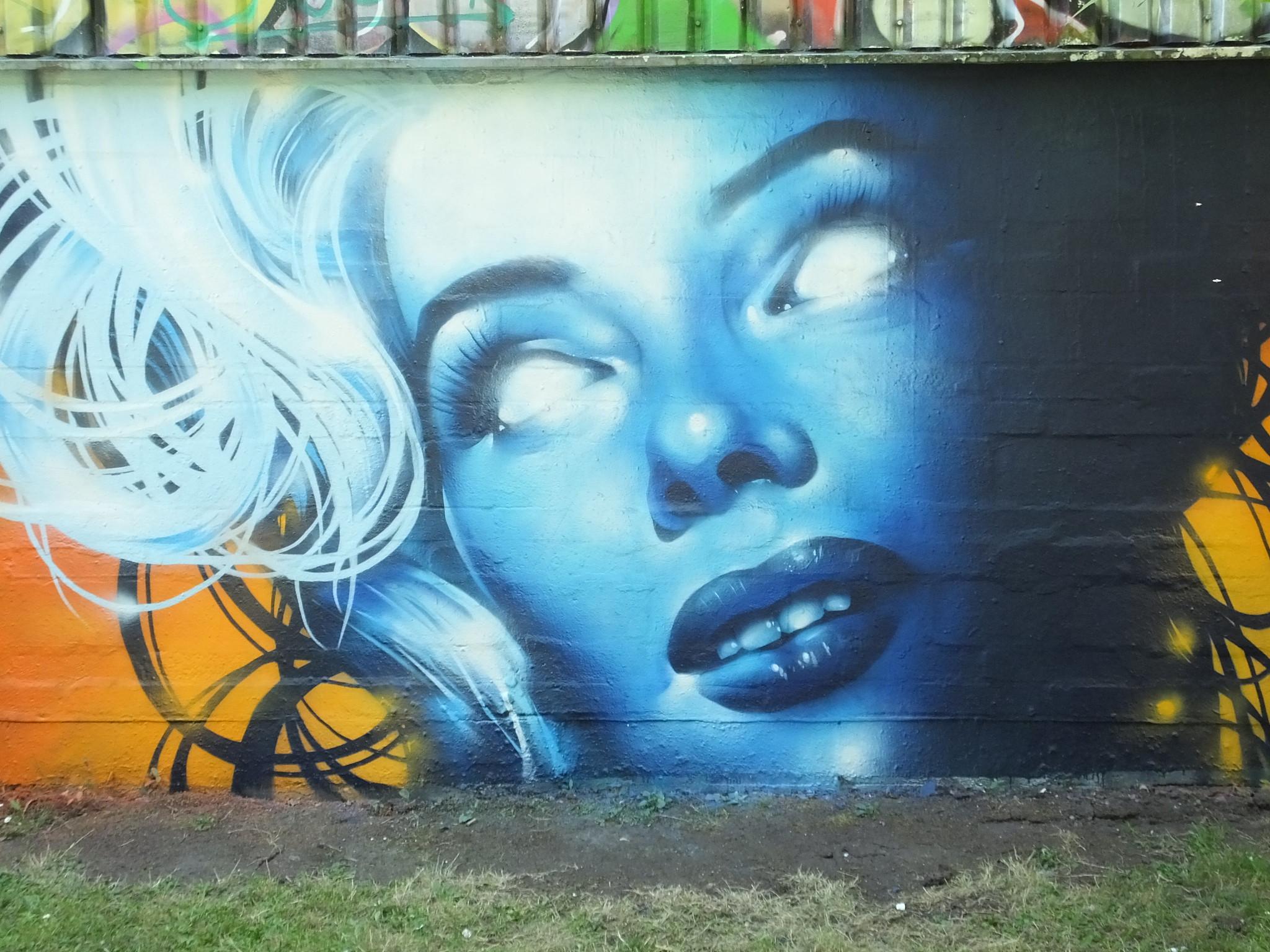 Rmer and Cruel Vapours, Sevenoaks Park, Cardiff