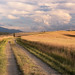 Summer in val d'Orcia by methariorn78