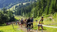 Vzhůru na trail! Na Krkonošské 50/25 KTRC zbývají poslední čísla