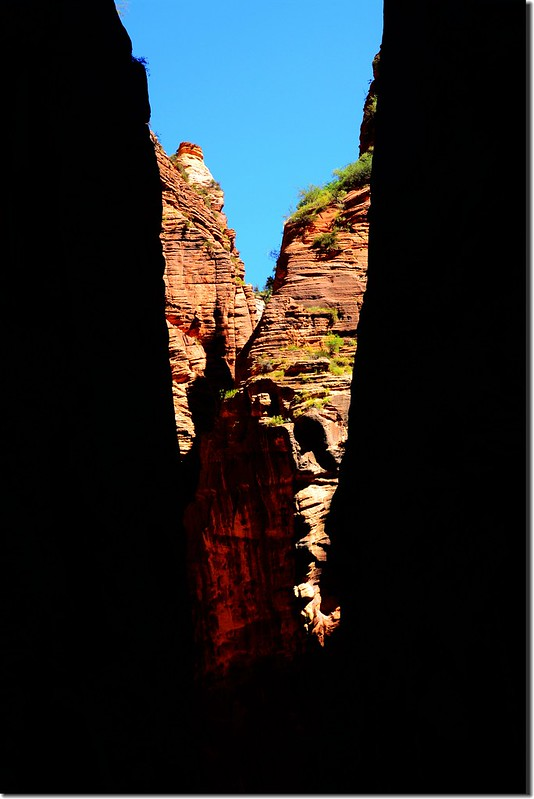 The Narrows, Zion National Park (35)