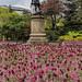 Gorsedd Gardens, Cardiff. Lord Ninian Crichton-Stuart Statue