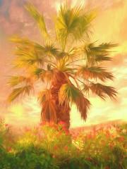 "Corfu 26 ""A refreshing change of scenery"""