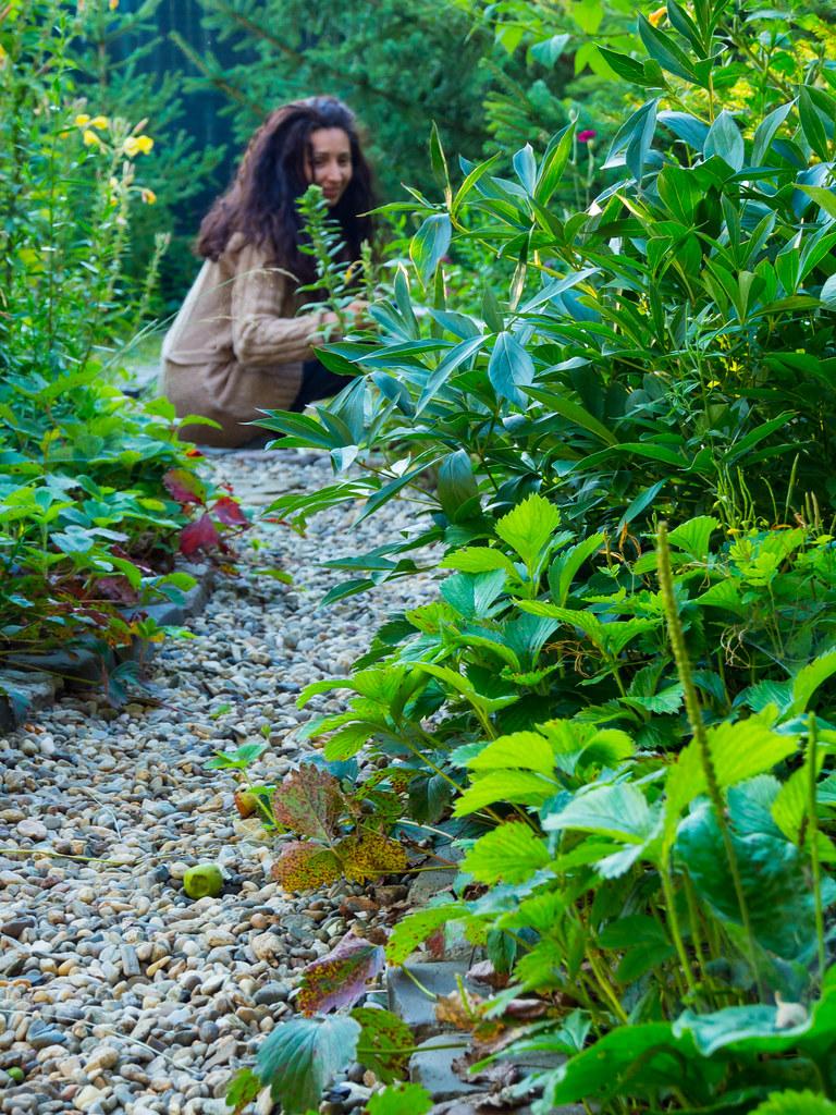 Ligia in the garden