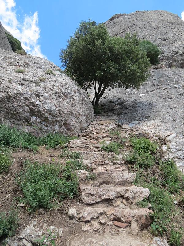 Escales de pedra de MontserratIMG_2615