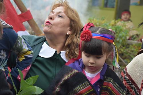 We Tripantu Año Nuevo Mapuche Las Amapolas 28 jun