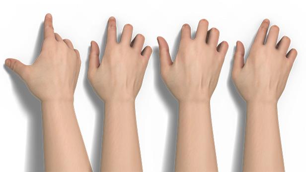 3D_SAP_Hands