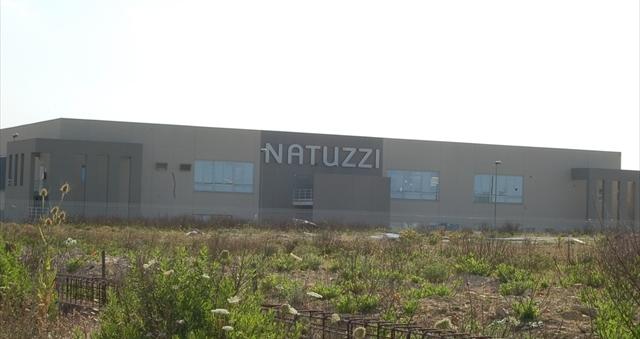 NATUZZI_01