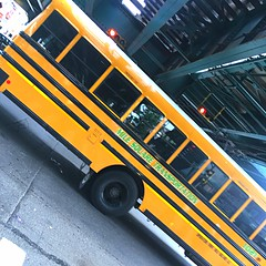 2015 Bluebird Vision, Mile Sqaure Transportation, Bus#1021    Are these propane?