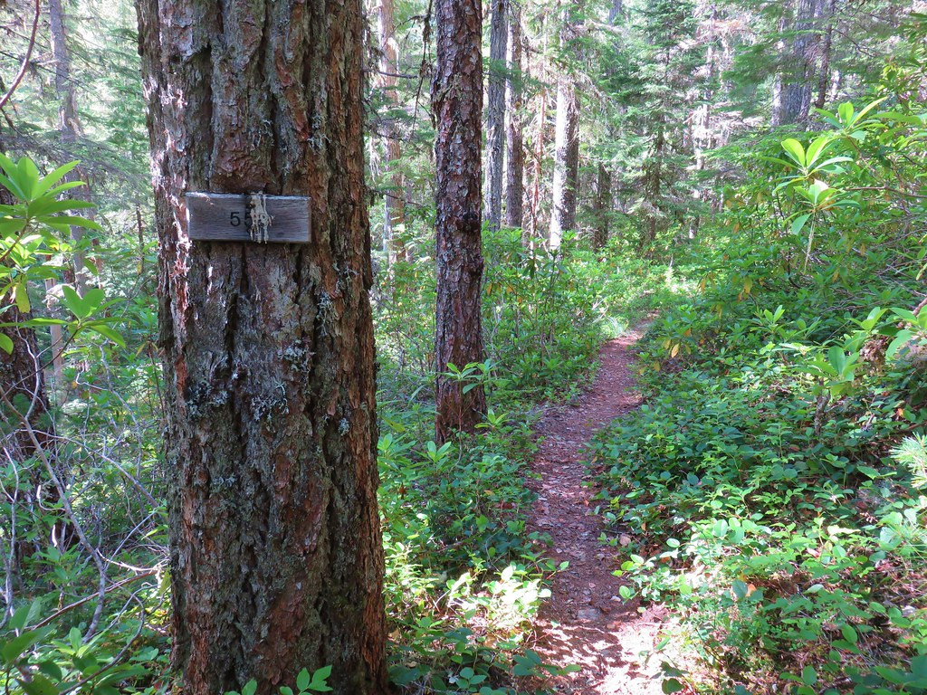 Elk Lake Creek Trail
