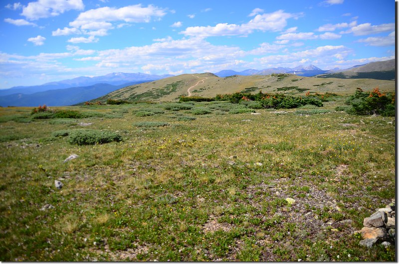 Looking at Mount Evans to Torreys Peak crest line from the Tundra (2)
