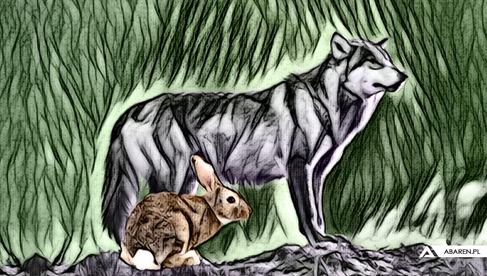 Wilk i zając