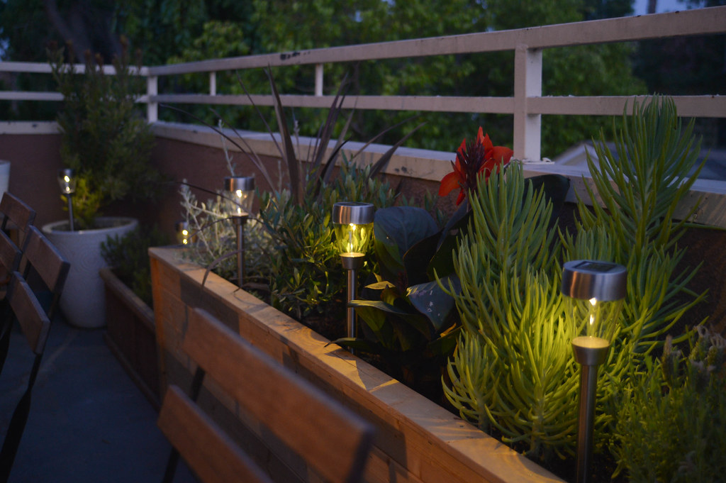 solar lights for the patio