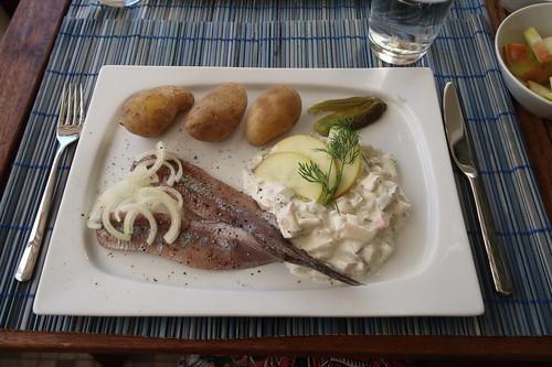 Holländischer Matjes mit neuen Kartoffeln und Apfel-Zwiebel-Sahne-Sauce