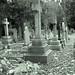 Gravestones_Bedworth Cemetery_Bedworth_Warwickshire_Nov17