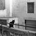 Via S. Martino, Matera, Basilicata Italy by Postcards from San Francisco