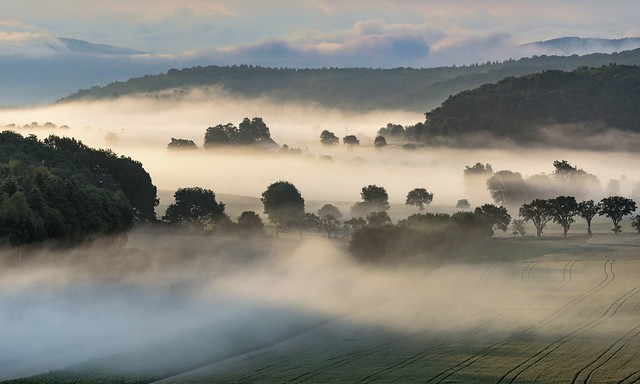 *Sommer im Tal der Morgennebel III*