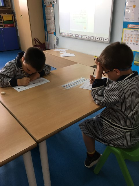 P5 tallers de llengua