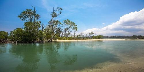 Baratang Island
