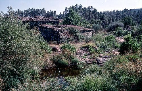 Près de la source du Rio Vouga (Portugal)