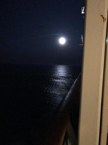 2018 Cruise - Day 2 - at sea-11