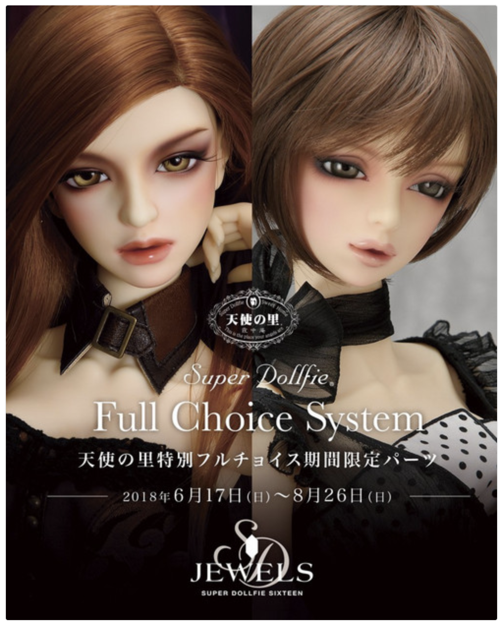 ALL IMAGES ARE PROPERTY OF VOLKS INC