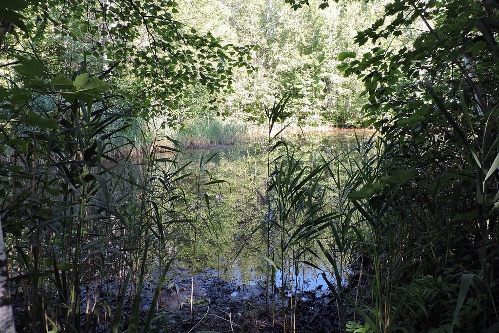 Parc des Étangs-Antoine-Charlebois