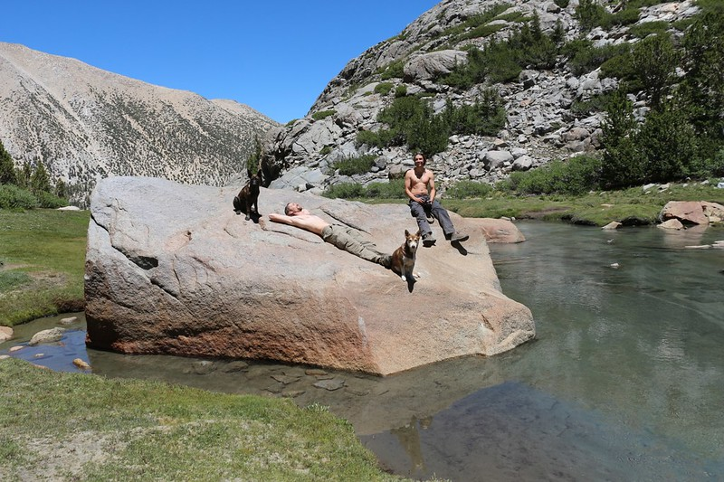 Taking a well-deserved break in the sun on a boulder in Sam Mack Meadow