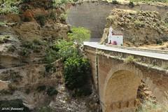 El Pinar (Granada)