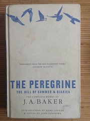 The Peregrine - J. A. Baker