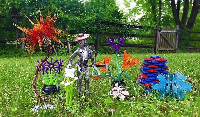 Extraterrestrial Garden
