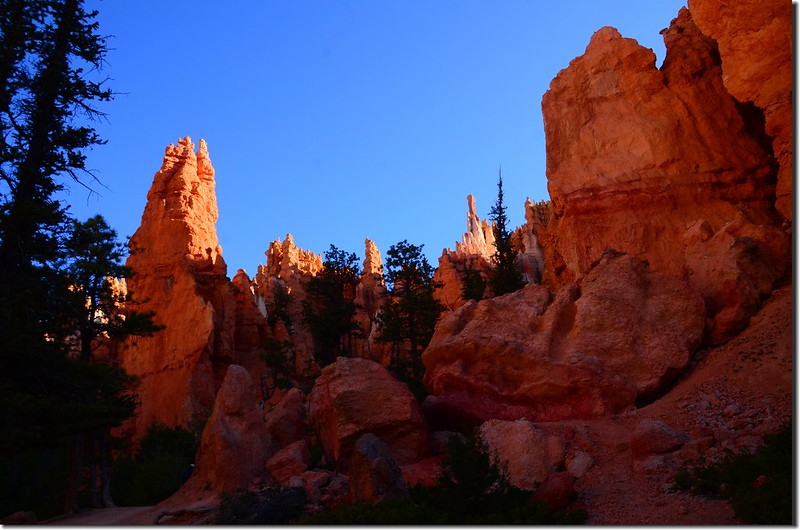 Queens Navajo Combination Loop,Bryce Canyon (15)