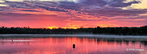 kissimmee sunrise day landscape panorama trees orange purple reflection water lake brownlake canon eos t1i slr flickr sunset serene peaceful early morning florida sky clouds outdoor nature tree sun