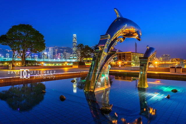 Dolphin Sunset (II) - Hong Kong