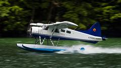 C-FDSG - Wilderness Seaplanes - deHavilland DHC-2 Beaver