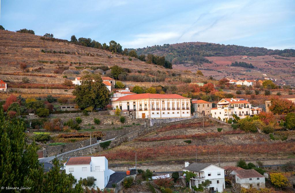 2017.- Pelo Douro no outono I (M313+N222) (301)