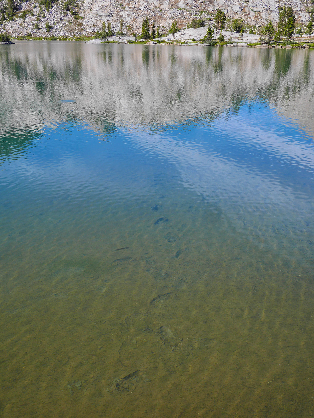 A swimmer's footprints on the bottom of Evolution Lake